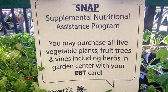 SNAP, EBT, welfare