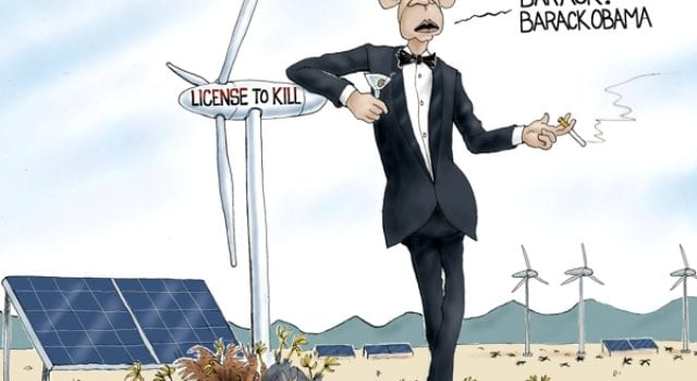 Obama, License To Kill, Windmills, Clean Energy, Bald Eagles, Birds