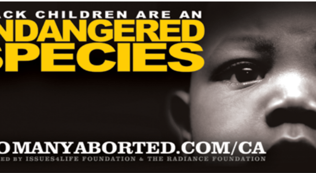 Black children are an endangered species, TooManyAborted