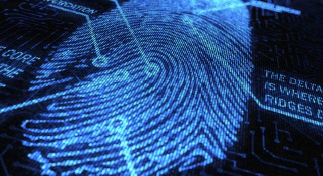 Fingerprint, Thumbprint