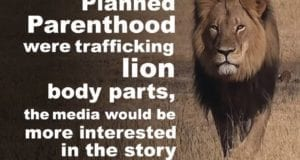Planned Parenthood, Body Parts For Sale, Lion Killed, Outrage
