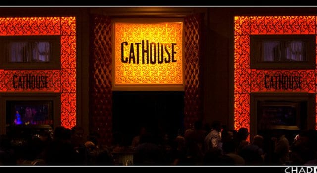 Cathouse At The Luxor