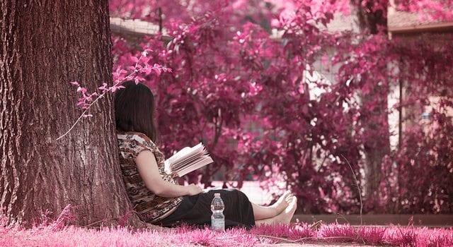 Reading, Book, Girl, Bible, Outside