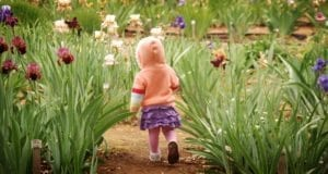Baby, Toddler, Person, Flowers