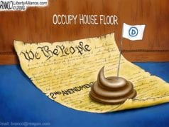 Democrats Occupy House Floor, Constitution