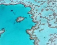 UN says Great Barrier Reef is in Danger  – Australia says – NOT SO FAST!
