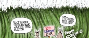 What happened to the Red Wave & Blue Wave predictions?!?